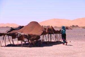 Wüstenbewohner - Nomaden